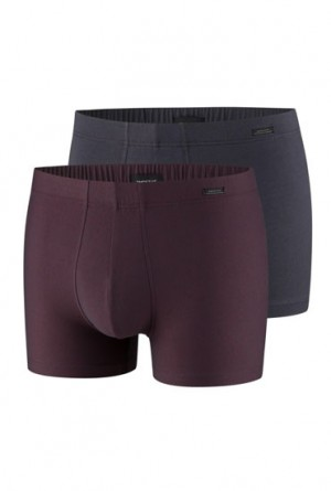 PAcks impetus ropa interior hombre hombre